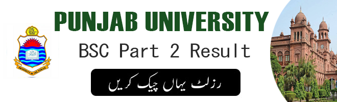 BSC Part 2 Result PU